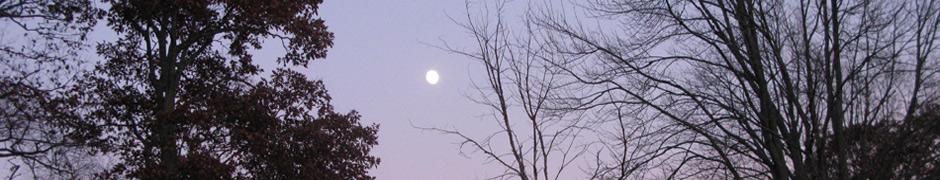 moon_2101
