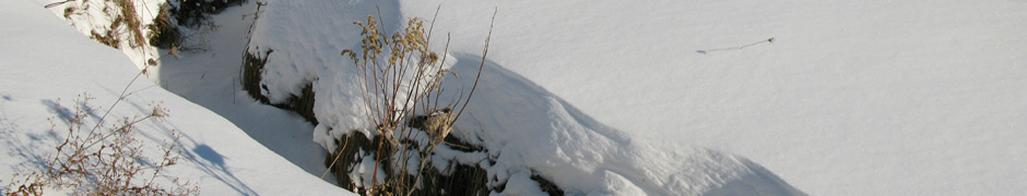 snow_0025