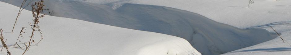 snow_0027