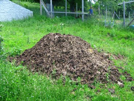 compost_9296