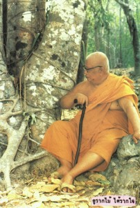 Tan Ajahn with Roots