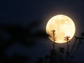 moon_1285b